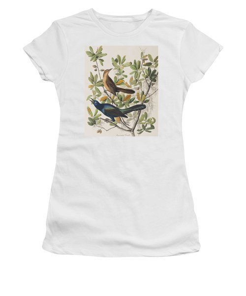 Boat-tailed Grackle Women's T-Shirt