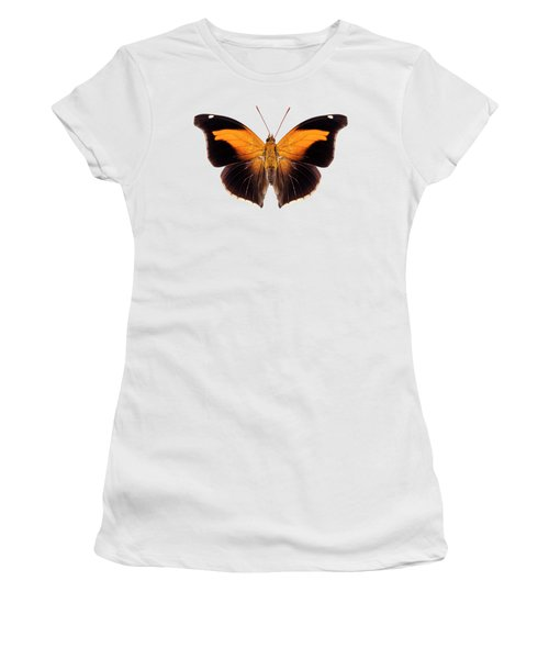 Butterfly Species Historis Odius Orion Women's T-Shirt
