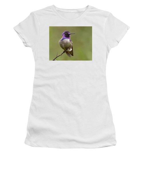 Costa's Hummingbird, Solano County California Women's T-Shirt (Junior Cut) by Doug Herr
