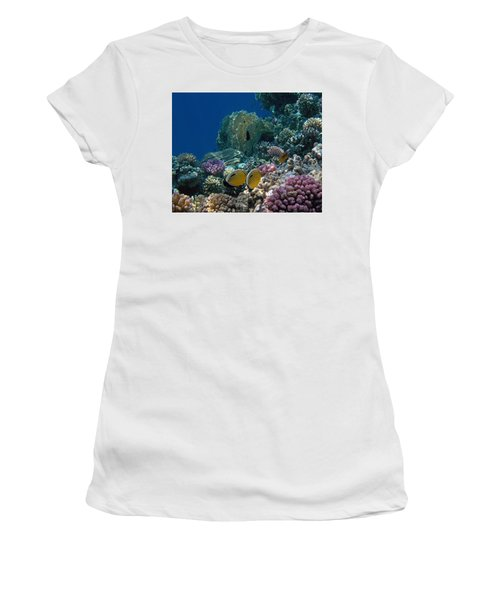 Exquisite Butterflyfish In The Red Sea Women's T-Shirt
