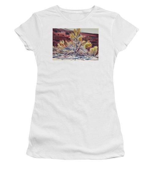 Ironwood Women's T-Shirt (Junior Cut) by Donald Maier