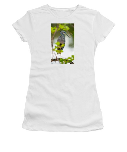 Women's T-Shirt (Junior Cut) featuring the photograph Little Blue Heron by Christopher Holmes