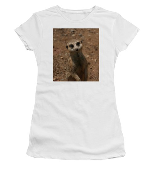 Women's T-Shirt (Athletic Fit) featuring the photograph Meerkat by Chris Flees