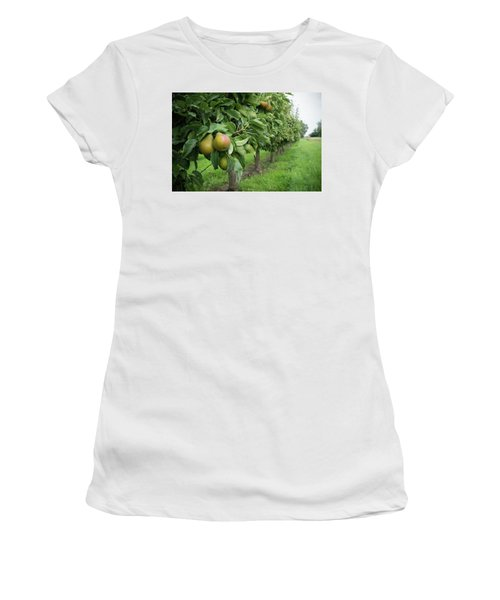 Pear Orchard Women's T-Shirt (Junior Cut) by Hans Engbers