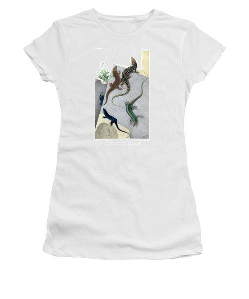 Varieties Of Wall Lizard Women's T-Shirt