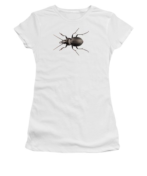 Beetle Species Carabus Coriaceus Women's T-Shirt