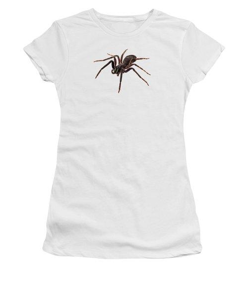 Black Spider Species Tegenaria Sp Women's T-Shirt