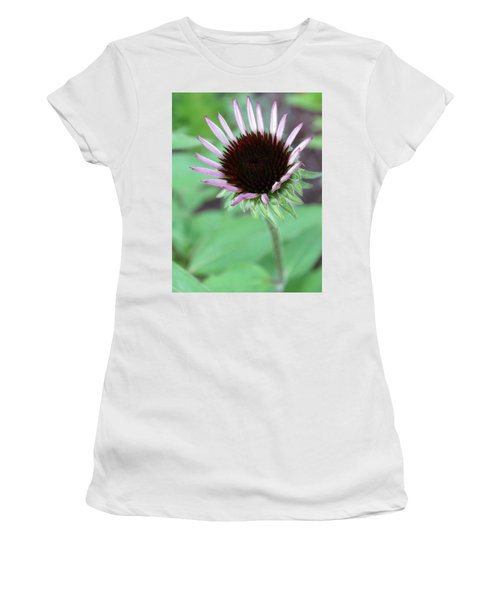 Emerging Coneflower Women's T-Shirt (Athletic Fit)