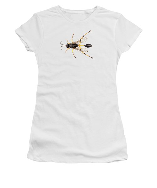 Wasp Mud Dauber Species Sceliphron Destillatorium Women's T-Shirt