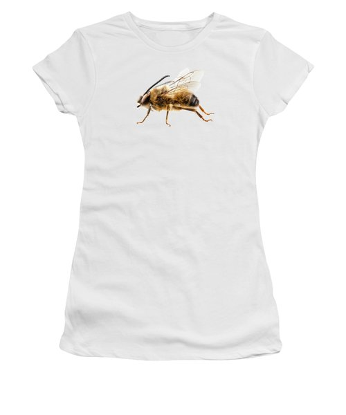 Bee Species Eucera Longicornis Common Name Solitary Miner Bee  Women's T-Shirt