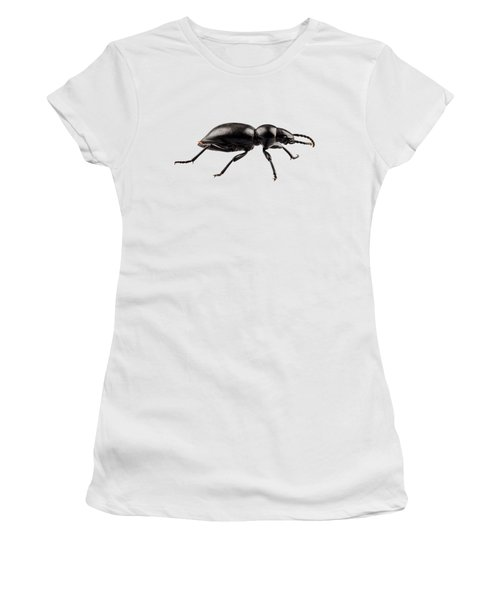 beetle species Tentyria peiroleri  Women's T-Shirt
