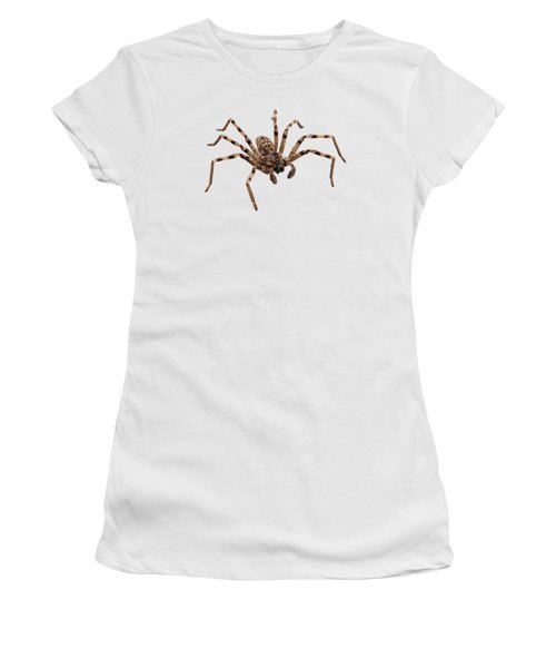 Wolf Spider Lycosa Sp Women's T-Shirt