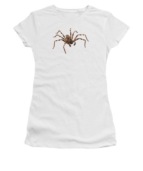 Wolf Spider Lycosa Sp Women's T-Shirt