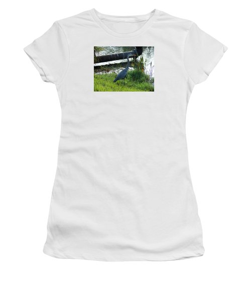 Great Blue Heron Women's T-Shirt (Junior Cut) by Kay Gilley