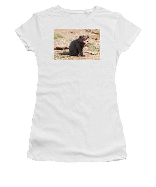 Tasmanian Devil Women's T-Shirt (Junior Cut) by Craig Dingle