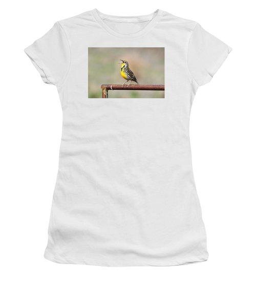 A Morning Song Women's T-Shirt (Junior Cut) by Michael Morse