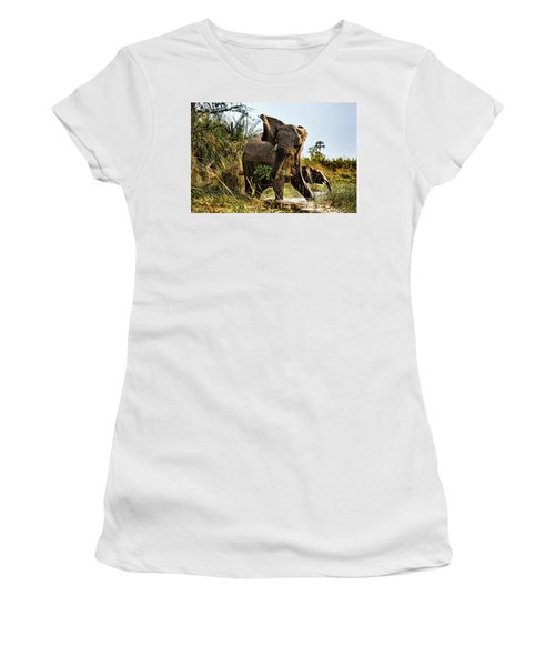 A Protective Mama Elephant With Calf  Women's T-Shirt