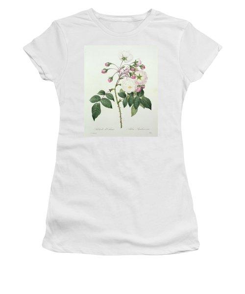 Adelia Aurelianensis Women's T-Shirt