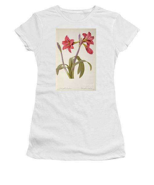 Amaryllis Brasiliensis Women's T-Shirt