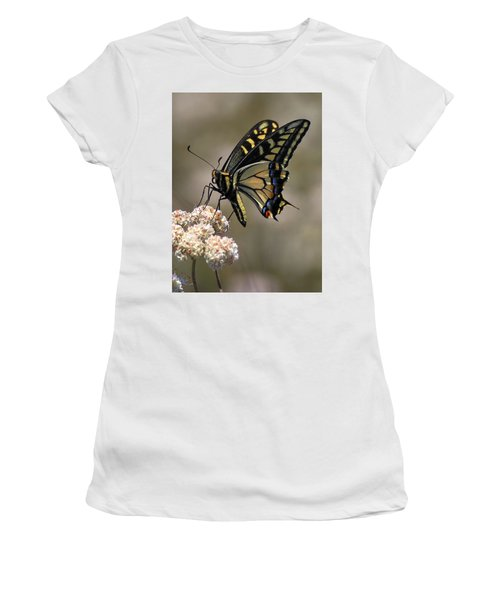 Anise Swallowtail Women's T-Shirt (Athletic Fit)