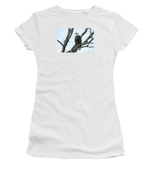 Bald Eagle 5 Women's T-Shirt (Junior Cut) by Steven Clipperton