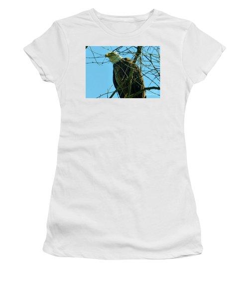 Bald Eagle Keeping Guard Women's T-Shirt