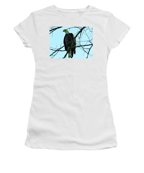 Bald Eagle Over The Root River Women's T-Shirt
