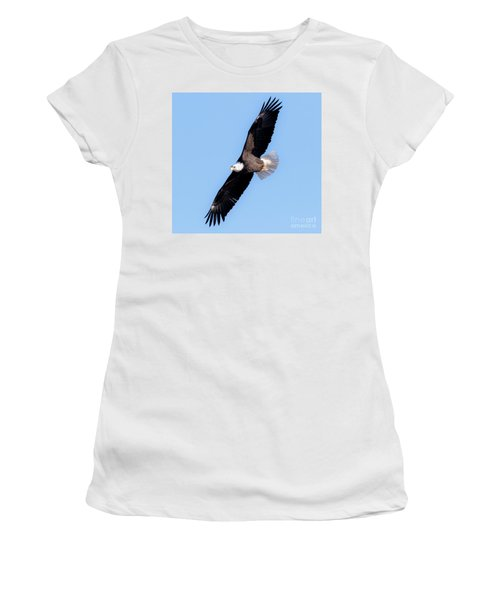 Bald Eagle Overhead  Women's T-Shirt