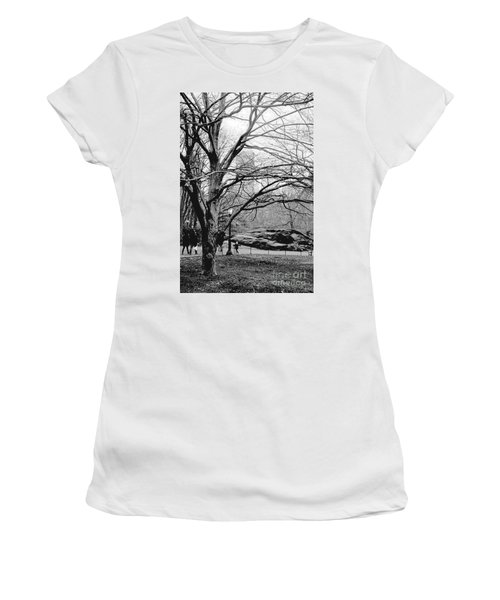 Women's T-Shirt (Junior Cut) featuring the photograph Bare Tree On Walking Path Bw by Sandy Moulder