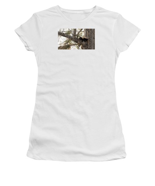 Bearly Hanging In There Women's T-Shirt