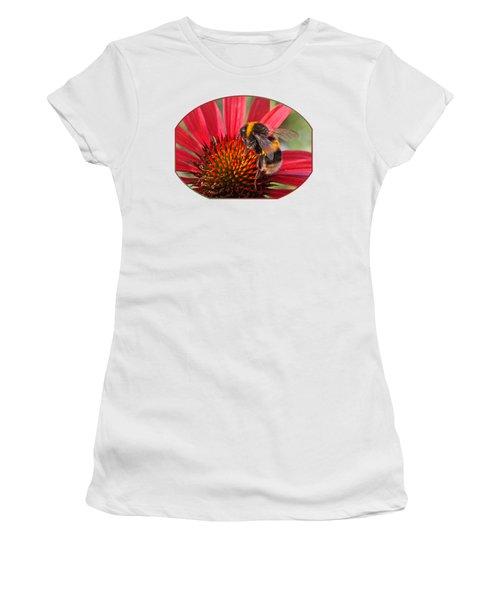 Bee On Red Coneflower 2 Women's T-Shirt