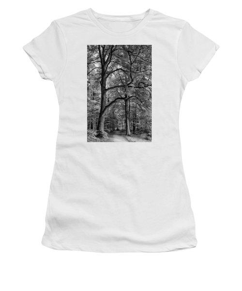 Beech Forest - 365-222 Women's T-Shirt (Junior Cut) by Inge Riis McDonald