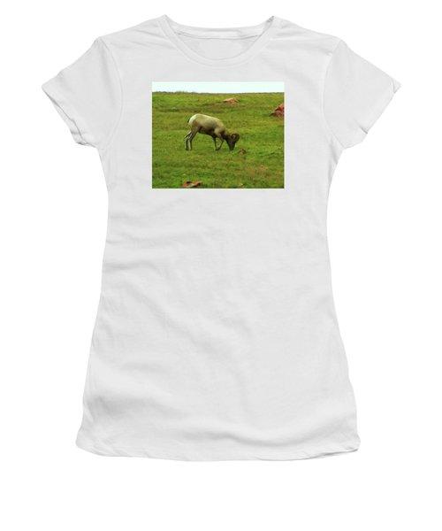 Women's T-Shirt (Junior Cut) featuring the digital art Bighorn Sheep Grazing by Chris Flees