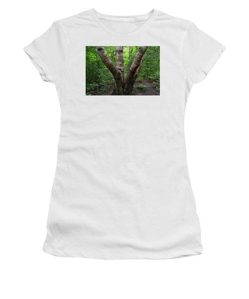 Birch Bark Tree Trunks Women's T-Shirt