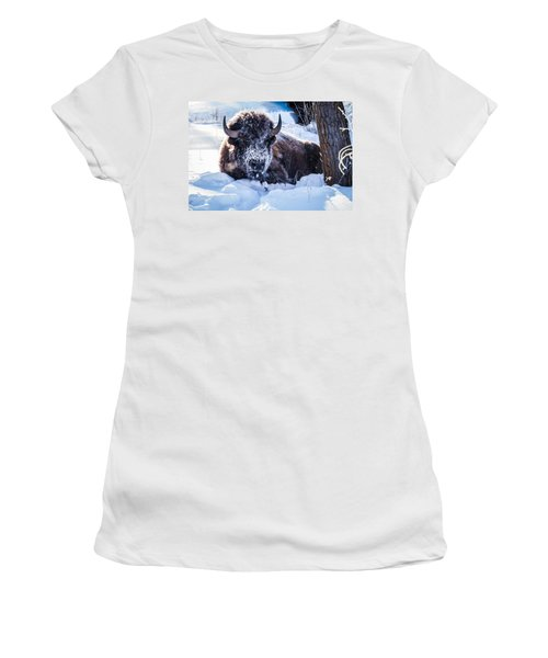 Women's T-Shirt (Junior Cut) featuring the photograph Bison At Frozen Dawn by Yeates Photography