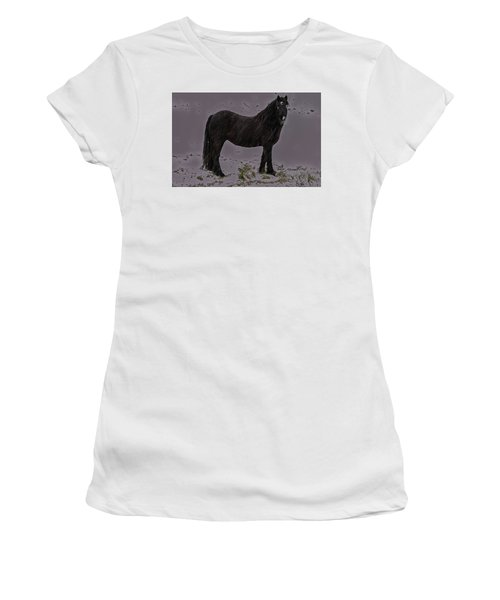 Black Horse In The Snow Women's T-Shirt (Athletic Fit)
