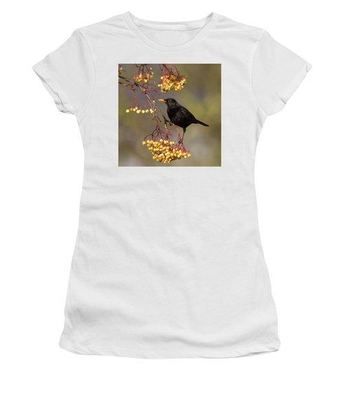 Blackbird Yellow Berries Women's T-Shirt