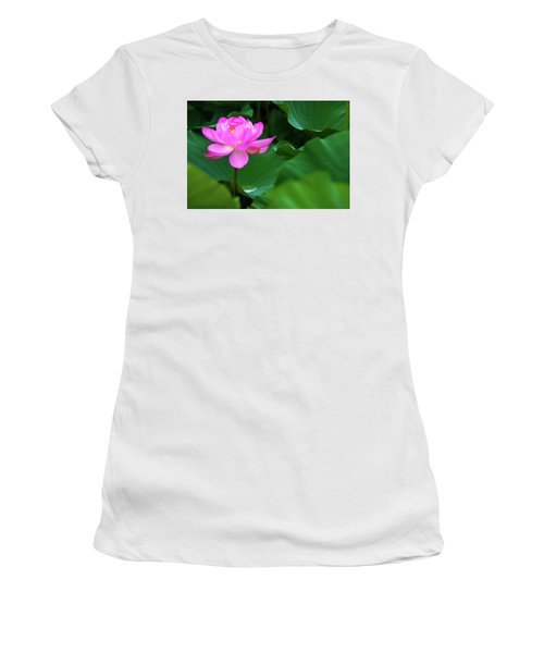 Blooming Pink Lotus Lily Women's T-Shirt