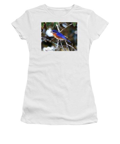 Blue Bird Women's T-Shirt (Junior Cut) by Lamarre Labadie