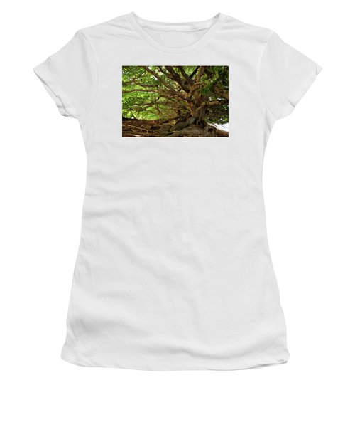 Branches And Roots Women's T-Shirt