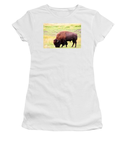 Buffalo Roaming Women's T-Shirt (Athletic Fit)