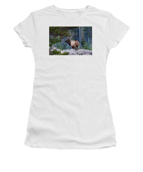 Bull Elk In Forest Women's T-Shirt
