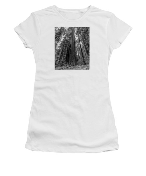 California Forest Women's T-Shirt (Athletic Fit)