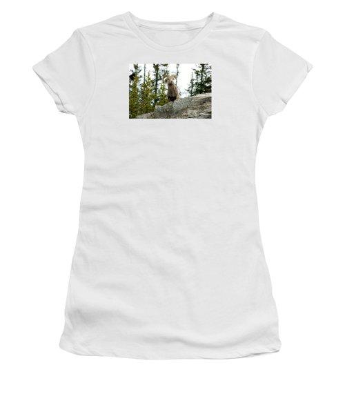 Canadian Bighorn Sheep Women's T-Shirt