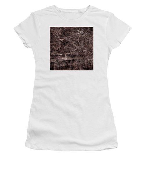 Canoe In The Adirondacks Women's T-Shirt (Junior Cut) by David Patterson