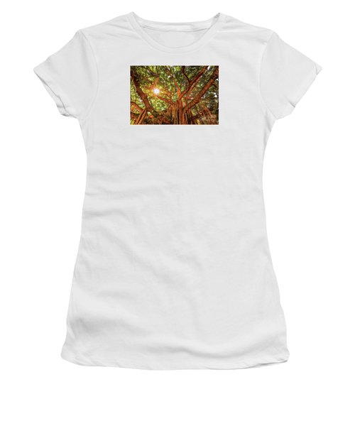 Catch A Sunbeam Under The Banyan Tree Women's T-Shirt