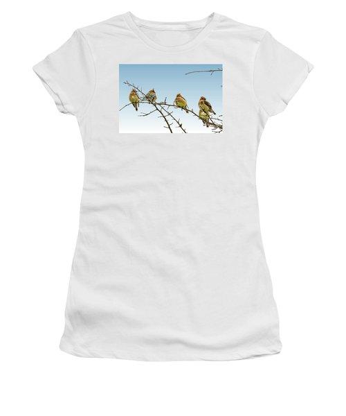 Cedar Waxwings Women's T-Shirt (Junior Cut) by Geraldine Scull