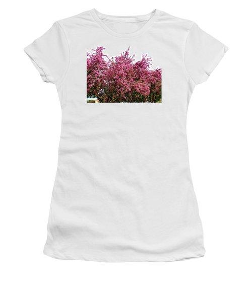 Cherry Blossoms 2 Women's T-Shirt (Junior Cut) by Will Borden