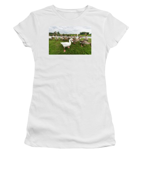 Curious Geese Women's T-Shirt (Junior Cut) by Hans Engbers