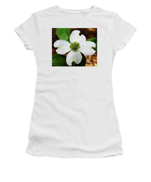 Dogwood Blossom Women's T-Shirt